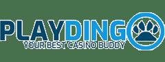 PlayDingo Casino